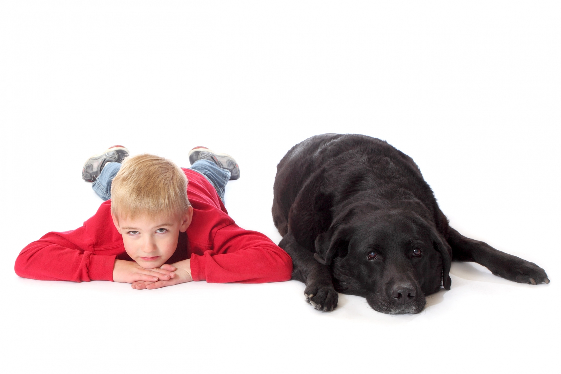 A boy and his dog 2